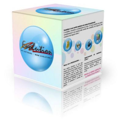 EVOLUTION 4 GESTIONALE RINNOVO 2 Utenti (licenza in formato elettronico) 8020779002946
